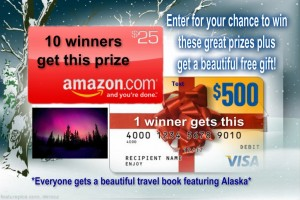 Win Visa or Amazon Gift Cards PLUS Get a Free Book