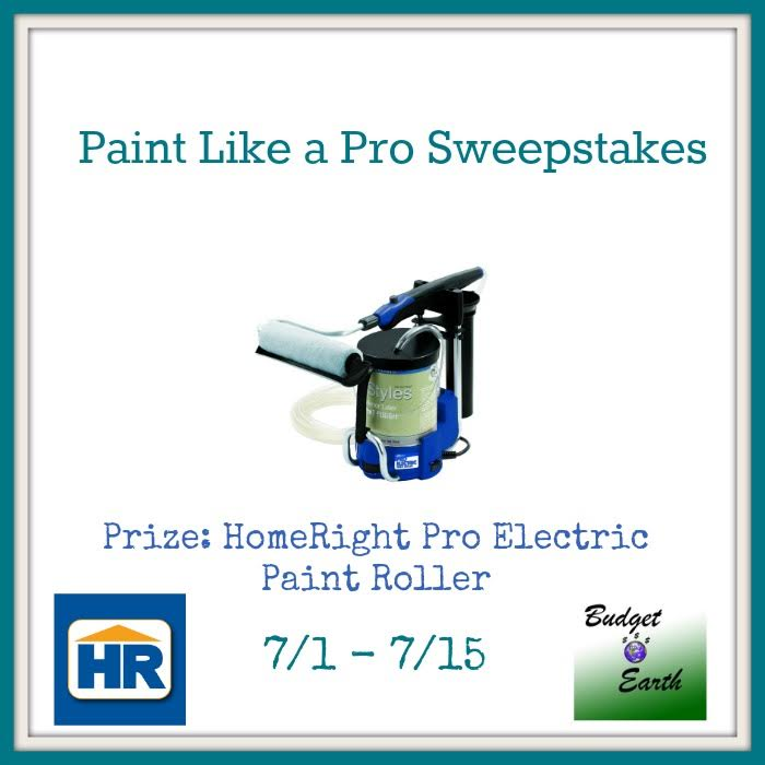 Paint Like a Pro Sweepstakes